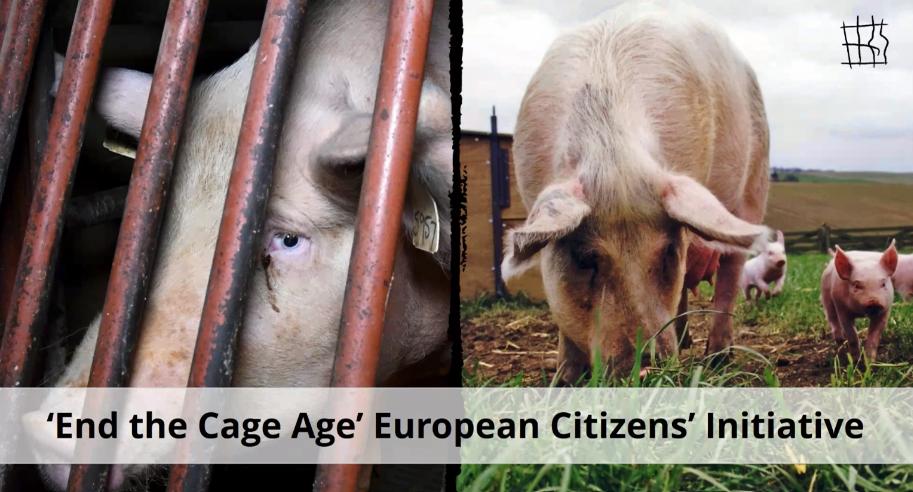 Europejska inicjatywa obywatelska Koniec Epoki Klatkowej