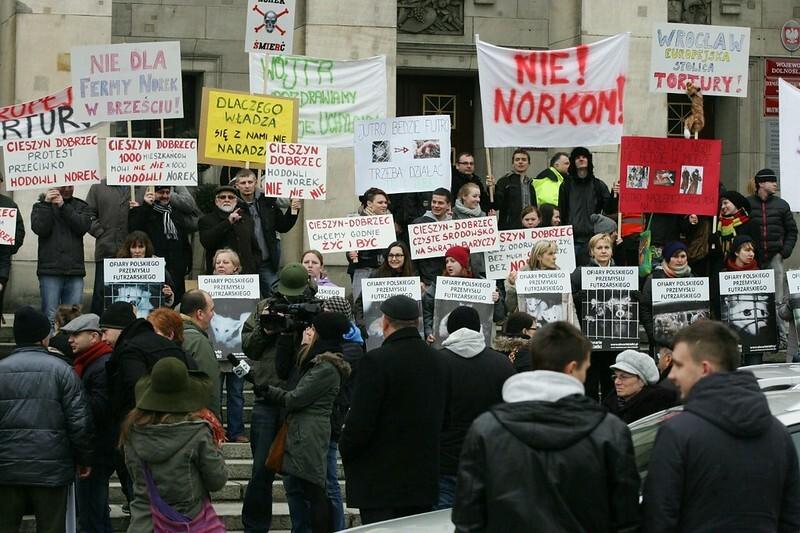 Grupa ludzi na proteście przeciwko fermie norek